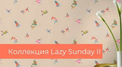 3208 Lazy Sunday II