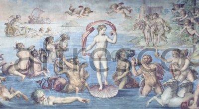 Affresco Giorgio Vasari, The birth of Venus